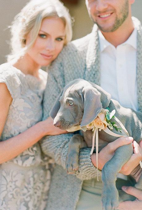 Pets-in-Weddings-Carmen-Santorelli
