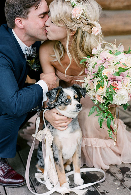 Pets-in-Weddings-Laura-Murray-Photography