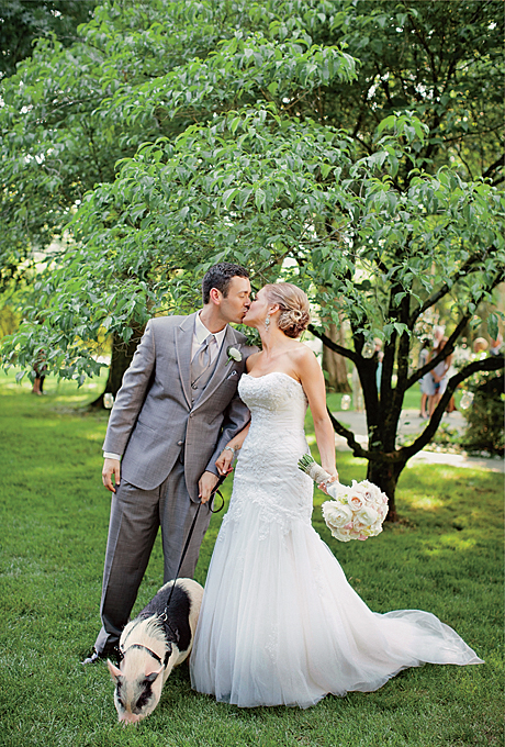 real-wedding-photos-with-pets-dog-cat-bird-horse-ideas-pig