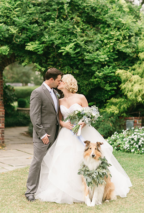 Pets-in-Weddings-We-Are-The-Mitchells